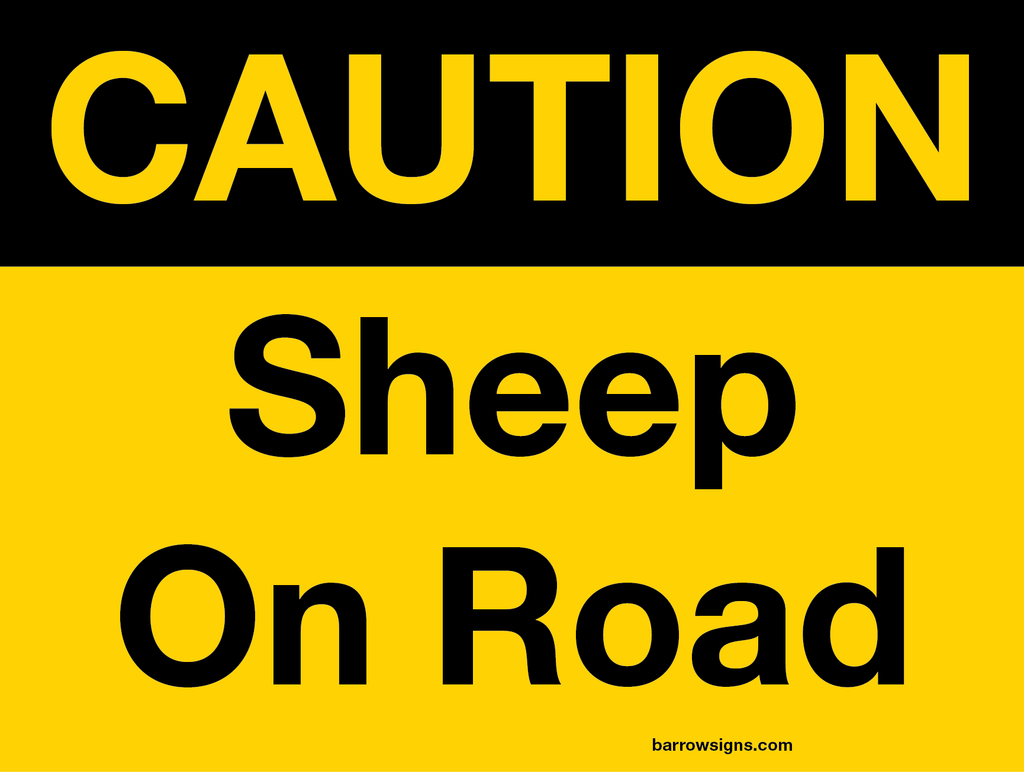 Caution Sheep On Road