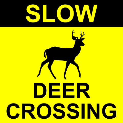 SLOW DEER CROSSING