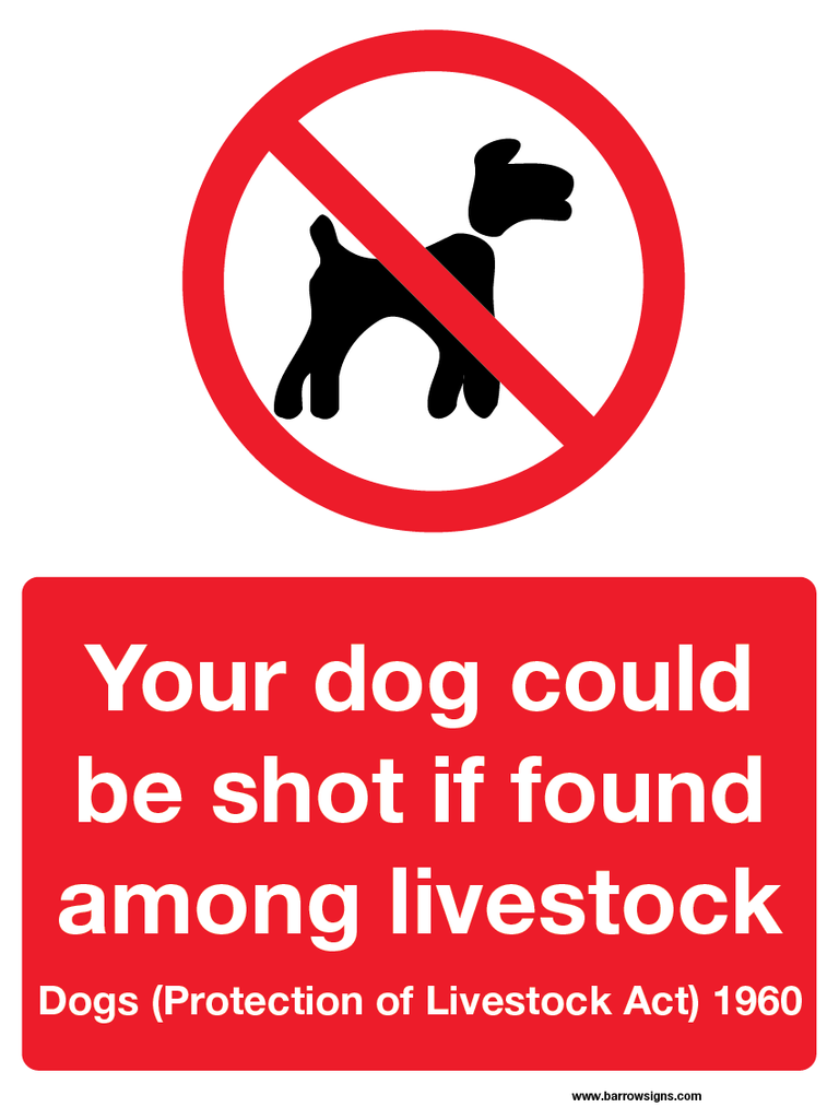 Dogs May Be Shot If Found Among Livestock