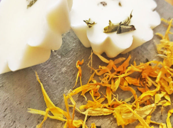 Bee on the Borage Essential Oil Wax Melts