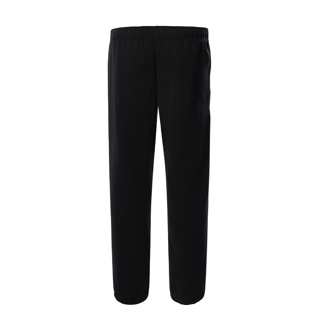 The North Face Coordniates Pant (black)