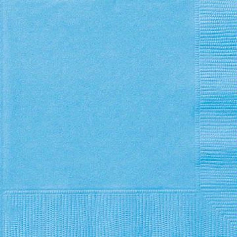 20PK 33CM 2PLY POWDER BLUE NAPKINS