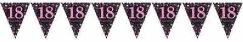 PINK SPARKLES AGE 18 BUNTING