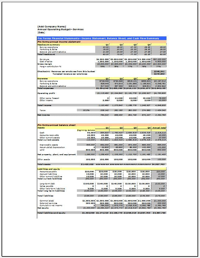 Annual Operating Budget For Services Organization Template