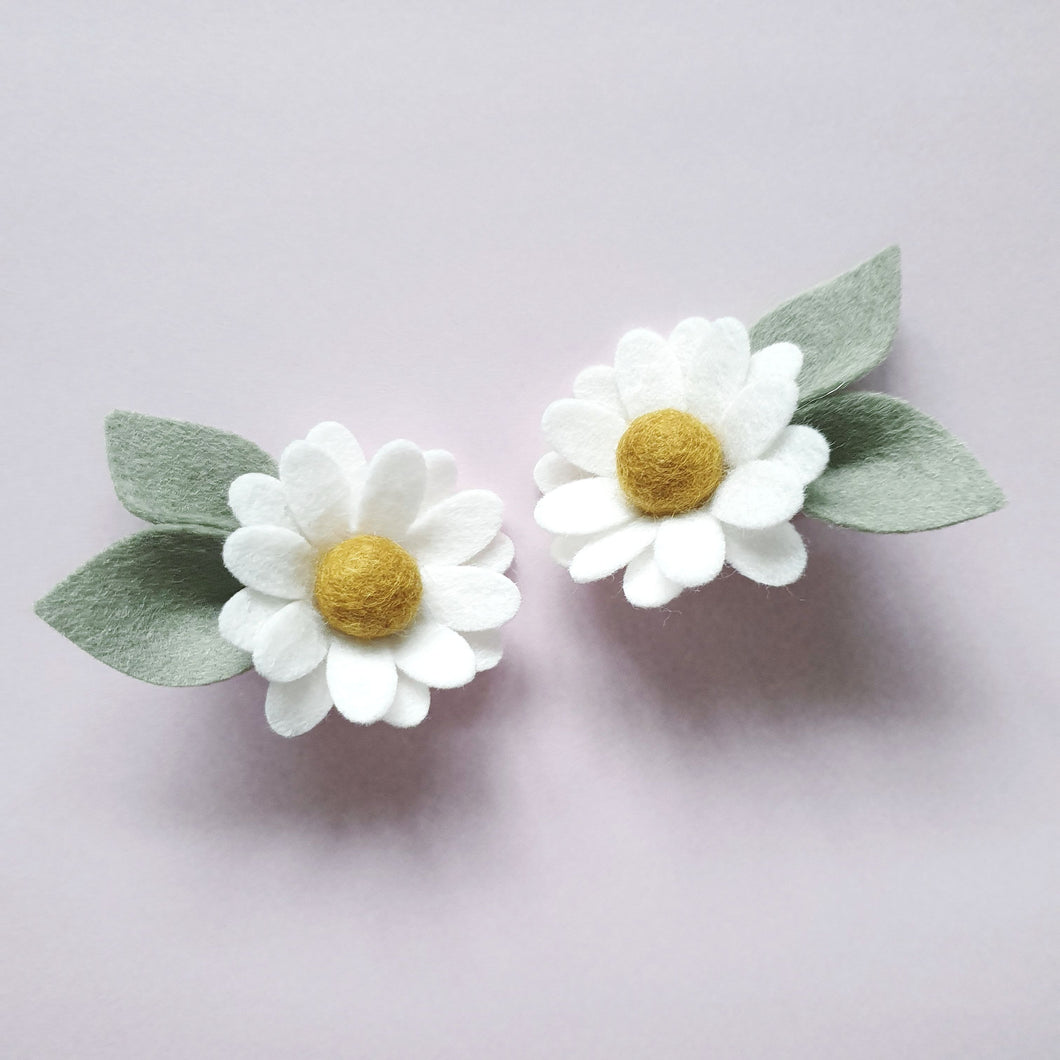 Daisy Piggy Blooms ~ White