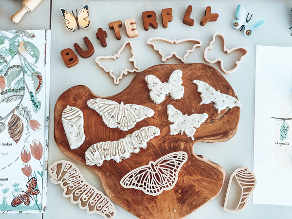 Monach Butterfly Life Cycle Eco Cutter Set