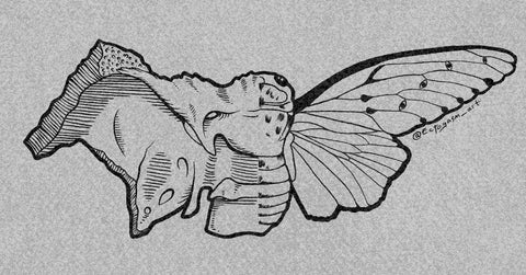 witchy art of a ghost cicada and a human bone.