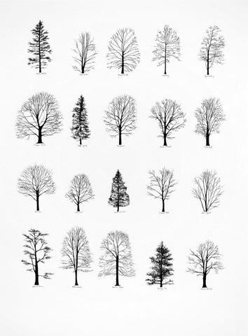 tree flash art for subtle tattoos