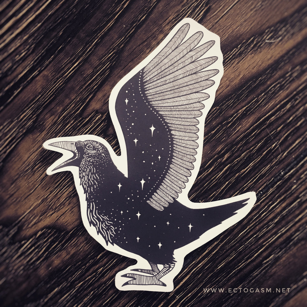 a beautiful sticker of a crow with stars in its wings. Art by Ectogasm.