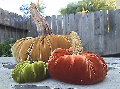 Medium Size Silk Velvet Pumpkin Kit