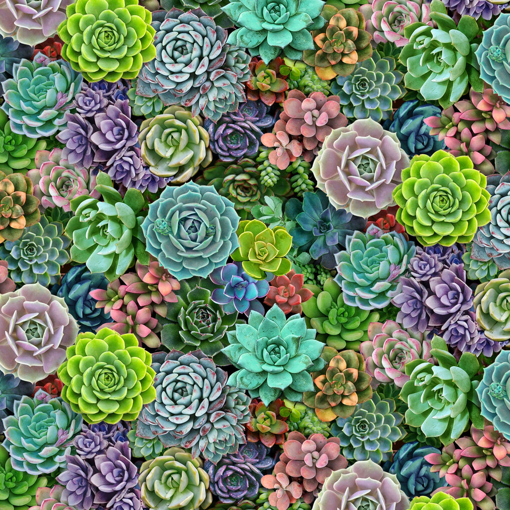 Landscape Medley Succulents - Elizabeth's Studio Cotton Fabric