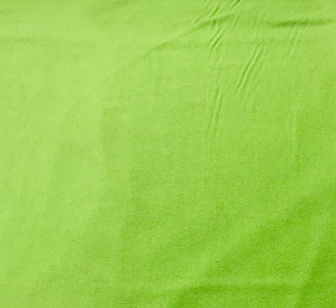 Apple Green - Maywood Studio Cotton Flannel Fabric