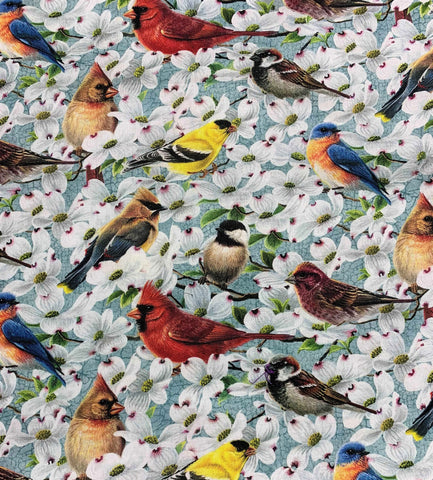All Over Birds on Light Teal - Joys of Spring - Northcott Studio Fabrics