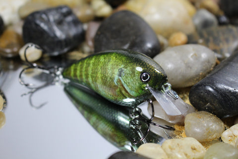 Forage Real Fish Bluegill 1.5 Squarebill