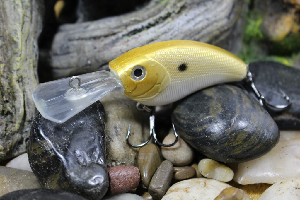 Forage Gold Shad Coffin Bill