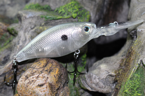 FORAGE FREEDOM SHAD FLMCB