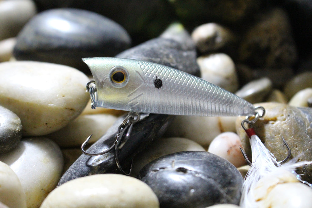 Forage Freedom Shad Finesse Popper