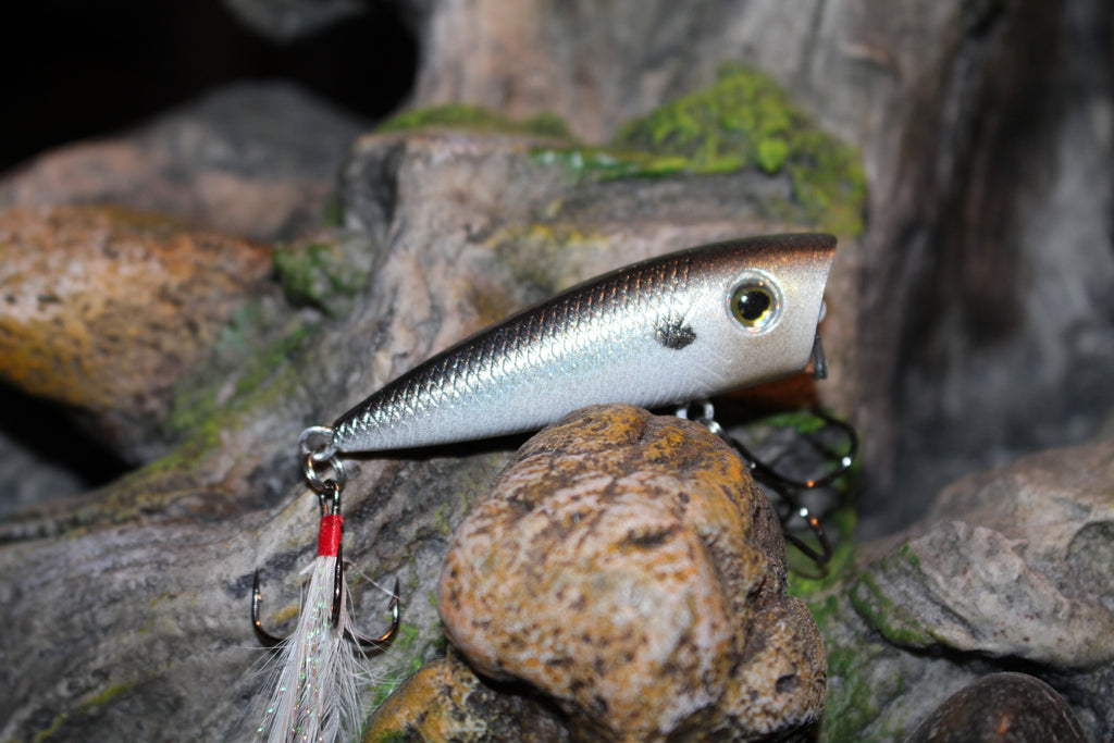 Forage Threadfin Shad Finesse Popper