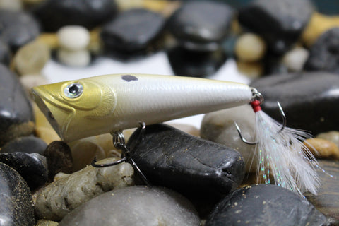 Forage Gold Shad Magnum Popper