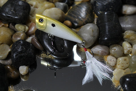 Forage Gold Shad Finesse Popper