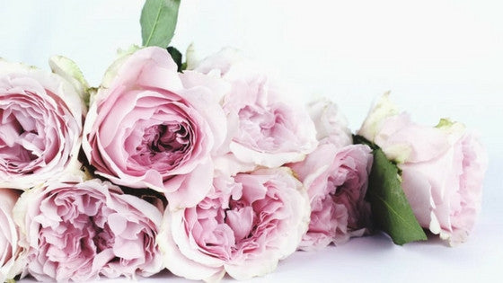 How to Use Rose Water for Beautiful Skin & Hair