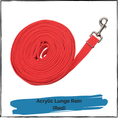 Acrylic Lunge Rein - Red