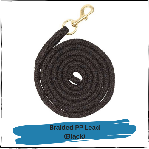 Braided PP Lead - Black