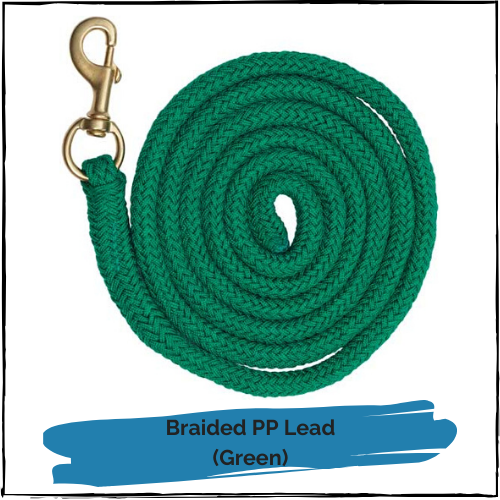 Braided PP Lead - Green