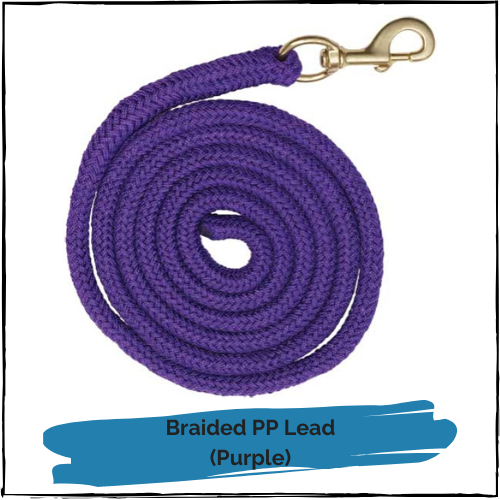 Braided PP Lead - Purple