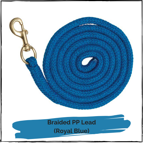 Braided PP Lead - Royal Blue