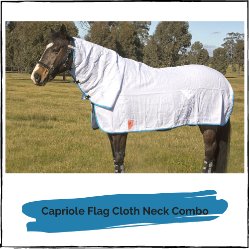 Capriole Flag Cloth Neck Combo