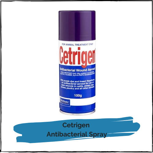 Cetrigen Antibacterial Spray 100gm