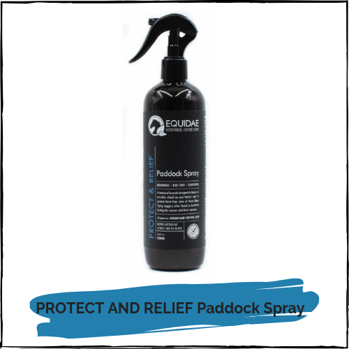 PROTECT AND RELIEF Paddock Spray 500ml