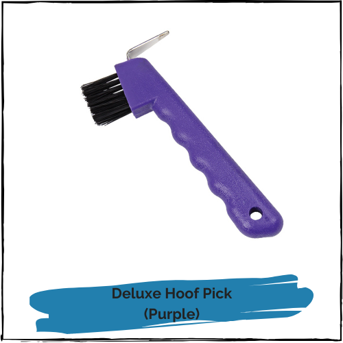 Deluxe Hoof Pick and Brush