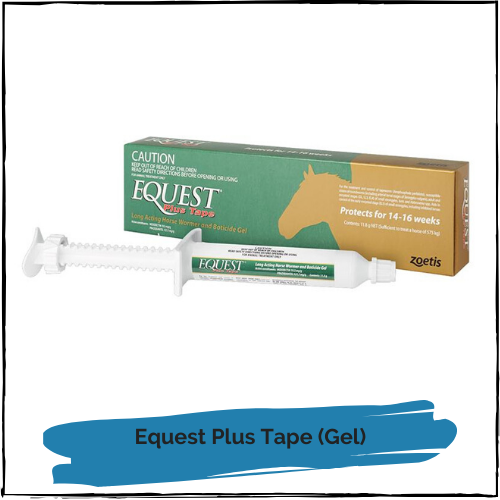 Equest Plus Tape (Gel)