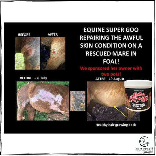 Equine SuperGoo - The Original Topical Cream