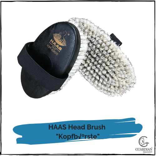 "HAAS Head Brush  ""Kopfbürste"""