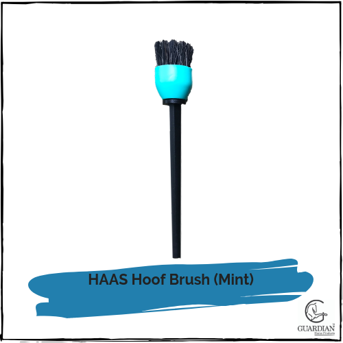 HAAS Hoof Brush