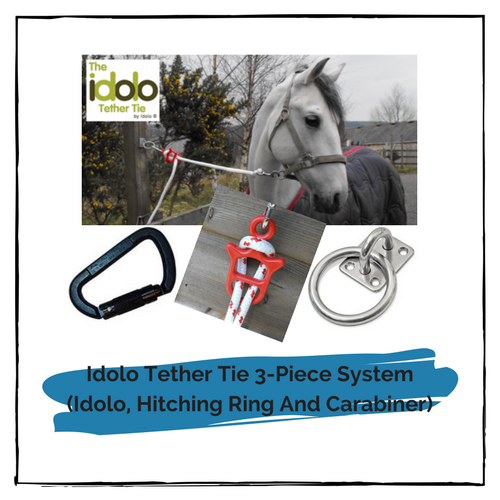 Idolo Tether Tie 3-Piece System (Idolo, Hitching Ring And Carabiner)