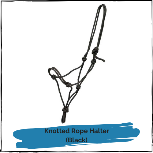 Knotted Rope Halter - Black