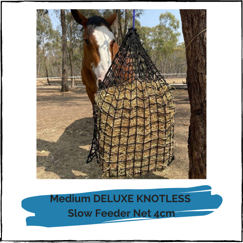 Medium DELUXE KNOTLESS Slow Feeder Net 4cm