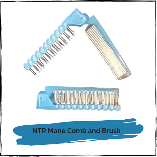 NTR Mane Comb and Brush