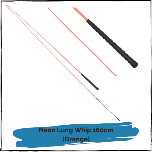 Neon Lunge Whip - Orange 160cm