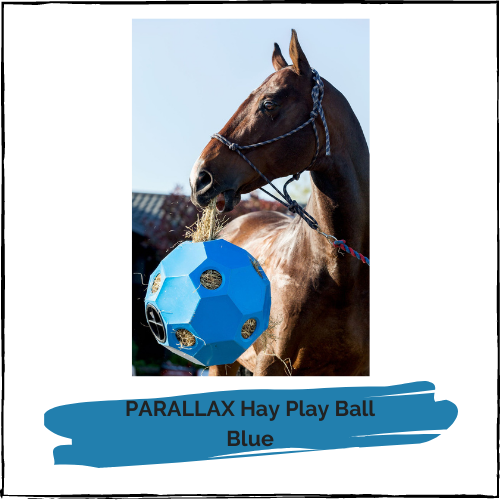 PARALLAX Hay Play Ball - Blue