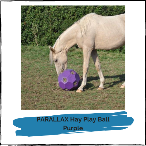 PARALLAX Hay Play Ball - Purple