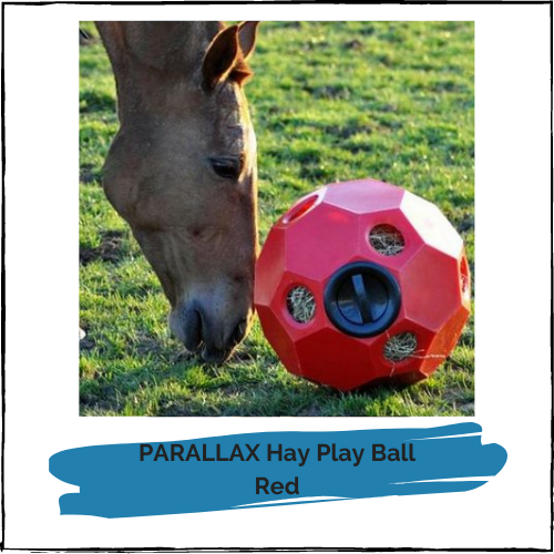 PARALLAX Hay Play Ball - Red