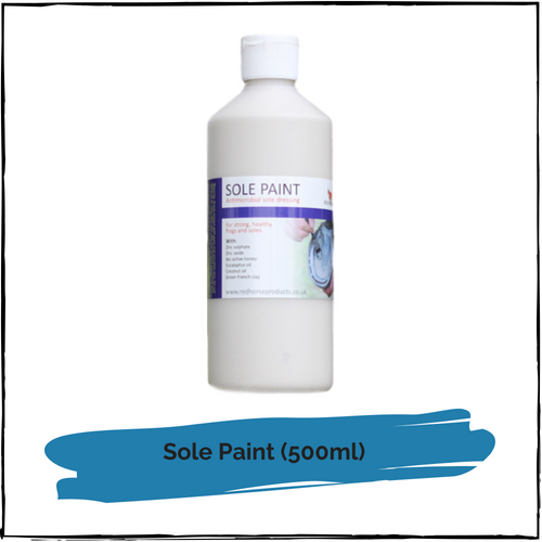Sole Paint 500ml