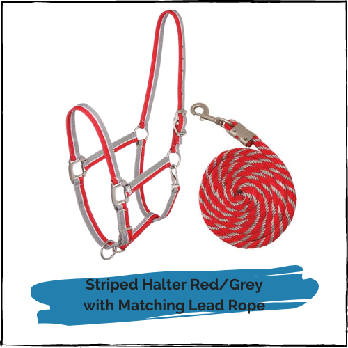 Striped Halter Red/Grey with Matching Lead Rope