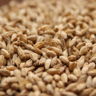 6-Row Barley Malt - Rahr - Doc's Cellar