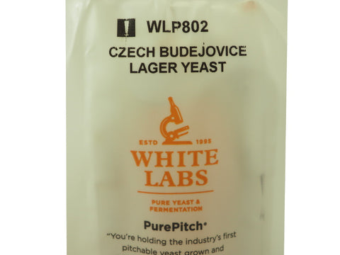 WLP802 Czech Budejovice Lager - Doc's Cellar